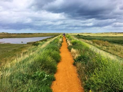 Coast path marshes norfolk Free Photo