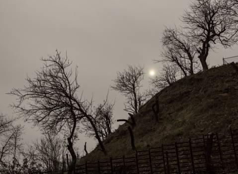 Autumn bare fence hill #55503