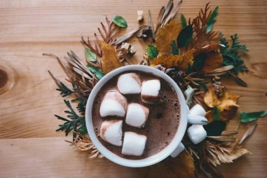 Autumn autumn leaf autumn leaves chocolate Free Photo