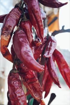 Chilli chilli pepper chilli peppers food #55647