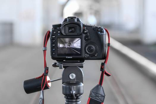 Camera canon dslr electronics Free Photo