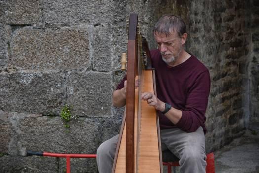 Concert harpe harpiste homme #56193