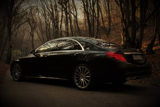 Auto autumn benz luxury car Free Photo