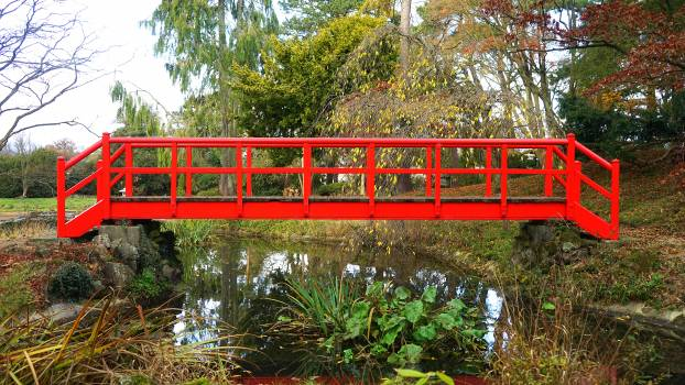 Bridge garden river road Free Photo