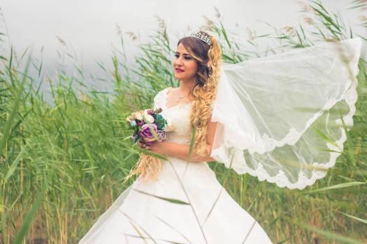 Dress Groom Gown Free Photo