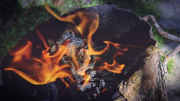 Burn burning burnt close up #57960