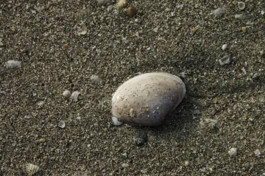 Beach sand sand beach sea beach #58329