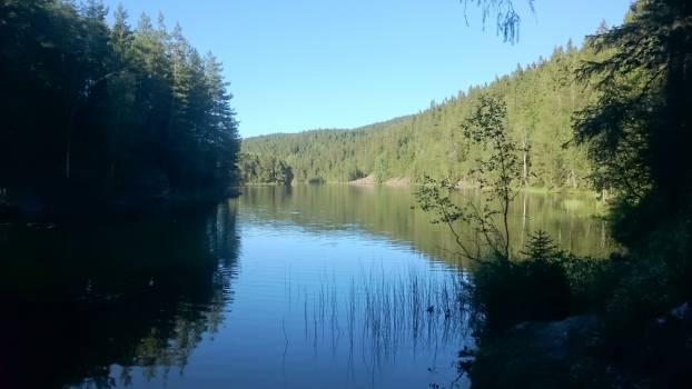 Landscape Water Lake #58623