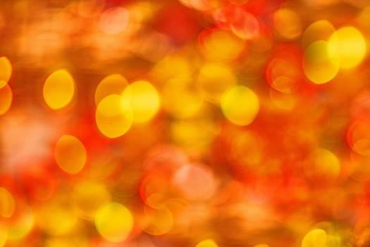 Defocused Image of Illuminated Lights Free Photo