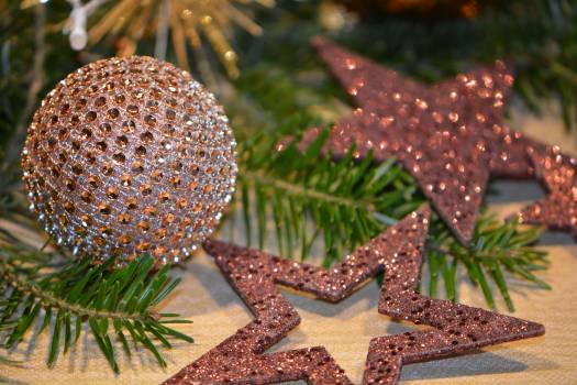 Close-up of Christmas Tree Free Photo