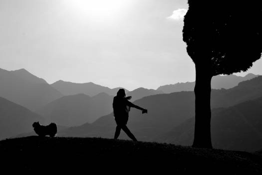 Silhouette of Man Standing on Mountain #61197