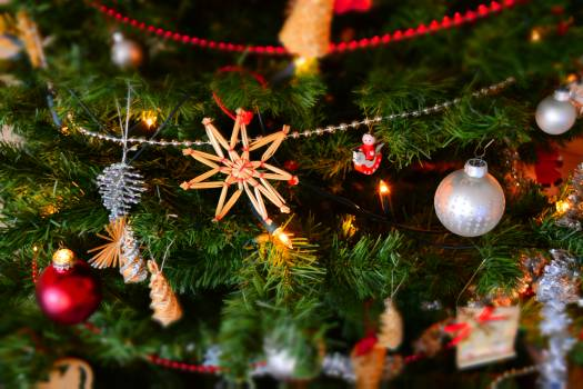Close-up of Christmas Decoration Hanging on Tree Free Photo