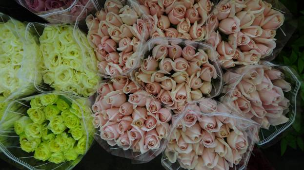 High angle view of flowers for sale in market Free Photo