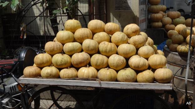 Pumpkins in Container Free Photo