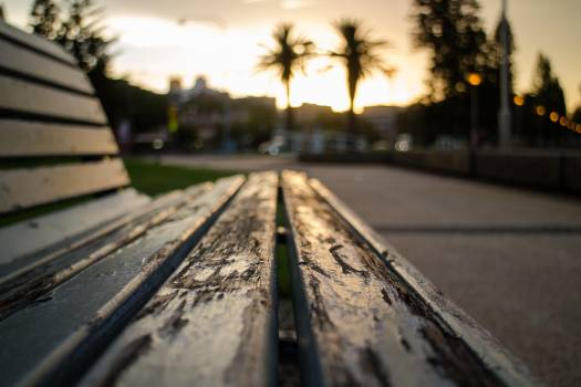 Close up of bench at sunset Free Photo