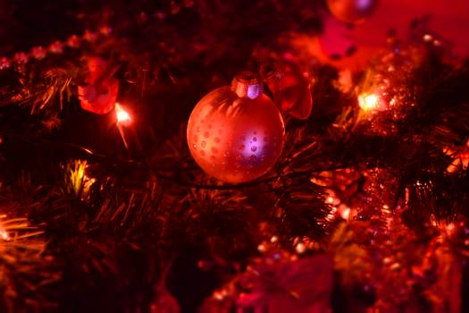 Close-up of Illuminated Christmas Tree at Night Free Photo