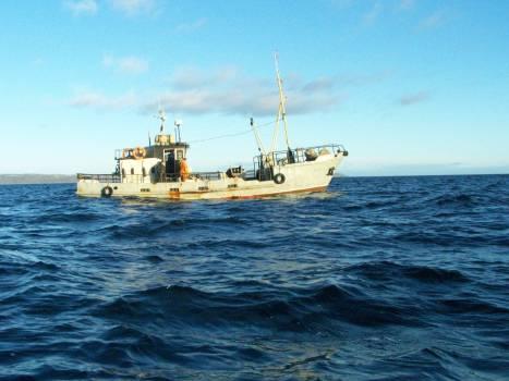 Nautical Vessel on Sea Against Clear Sky Free Photo