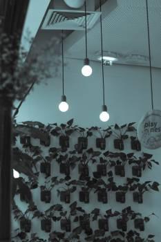 Illuminated Lamp Hanging Against Sky at Night Free Photo