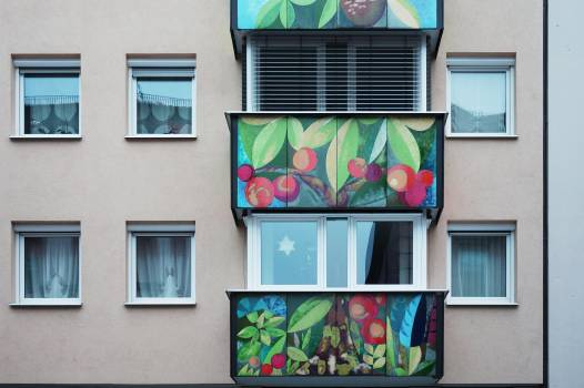 Multi colored flowers in balcony Free Photo