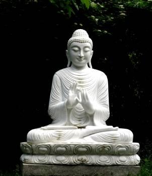Statue of Buddha Statues #65398