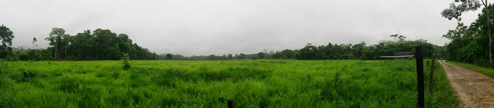 Panoramic View of Agricultural Field Against Sky #65915
