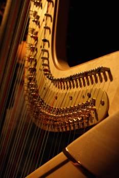 Close Up of Piano #66588