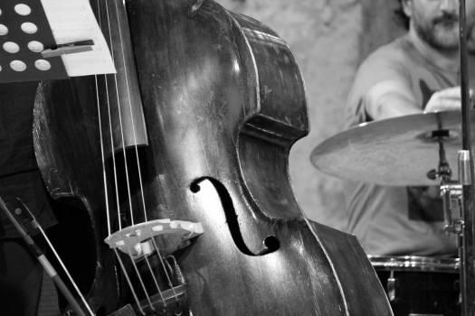 Close-up of Man Playing Guitar Free Photo
