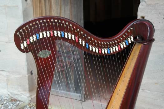 Concert harp harp head knee #67177