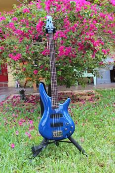 Blue guitar concert electric electric guitar Free Photo