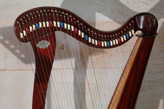 Choir dopamine honing concert harp harp head #67220