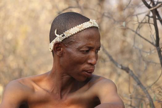 Africa botswana hunter landscape Free Photo