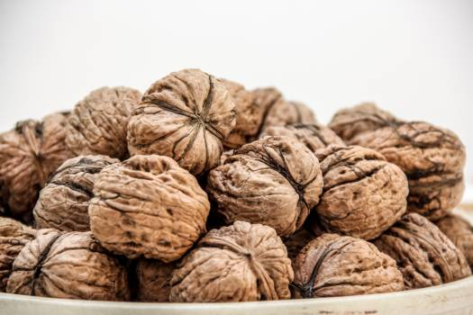 Nut Food Healthy Free Photo