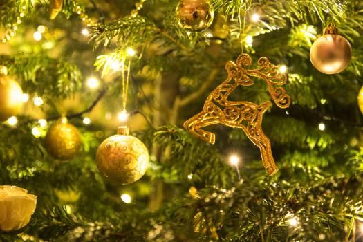 Celebration christmas christmas background christmas lights Free Photo