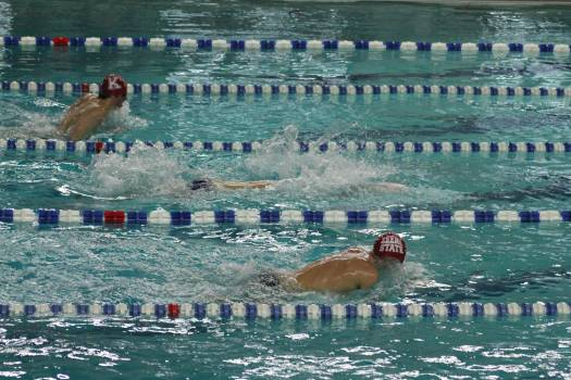 Aquatic athlete compete competition Free Photo