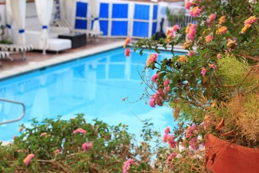Blue garden gardening holiday #69332