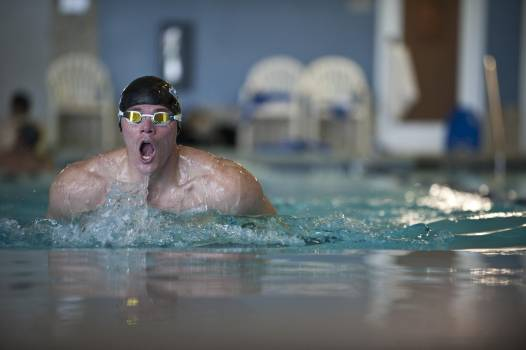 Athlete breaststroke cap competition Free Photo