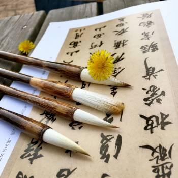 Latiflorus set students to practice calligraphy shanlian lake pen sheep and cents #69692