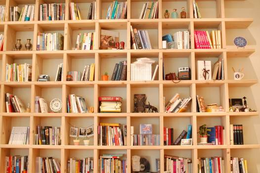 Book bookcase reading Free Photo
