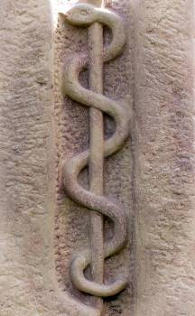 Asclepius staff askulapstab doctor doctors Free Photo