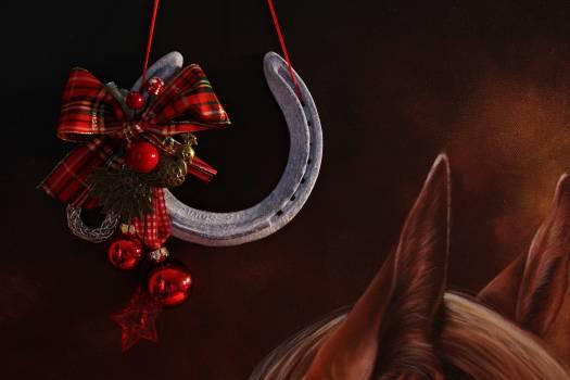 Advent christmas christmas balls christmas decoration Free Photo