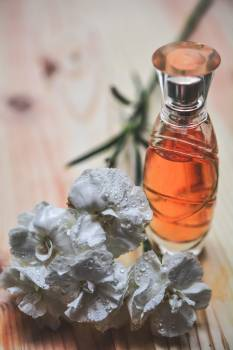 Aroma aromatherapy aromatic bottle Free Photo