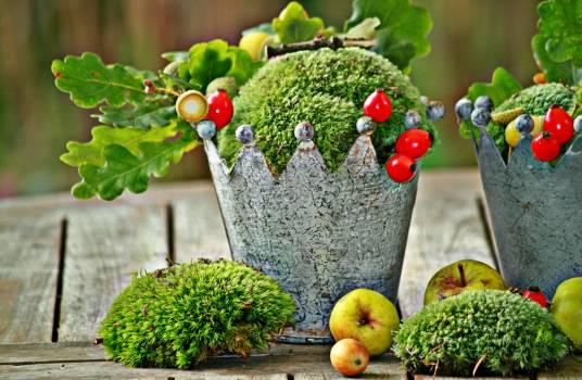 Apple autumn autumn decoration autumn fruits Free Photo