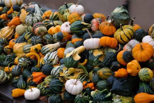 Aladdin autumn autumn decoration baby boo #73361