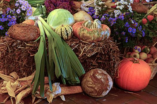 Autumn bread cereals fruit Free Photo