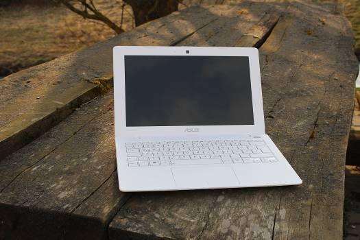 Independent laptop notebook work Free Photo