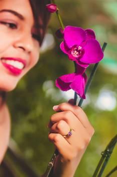 Beautiful bloom blossom flora #73652