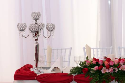 Decorations event roses table Free Photo