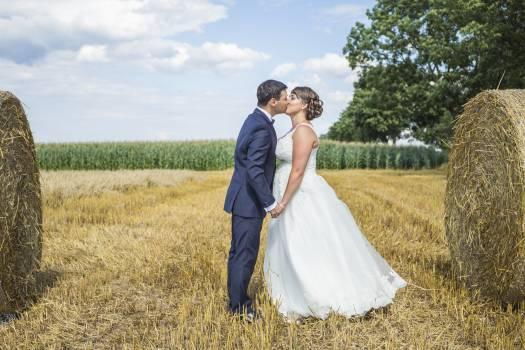 Bride corn field hay #73747