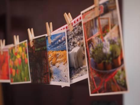 Art hanging photographs photos #73791
