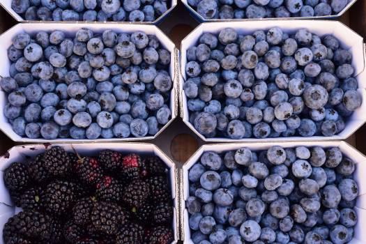 Berries blackberries blue blueberries Free Photo